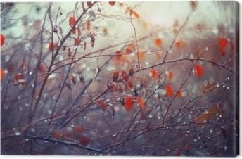 Canvas Achtergrond met takken en regendruppels