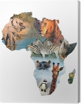 Canvas Afrika collage