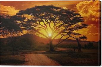 Canvas Afrika Zonsondergang