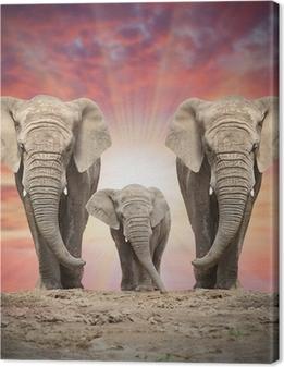 Canvas Afrikaanse olifant familie op de weg.