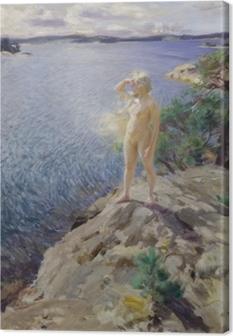 Canvas Anders Zorn - Na skalném útesu