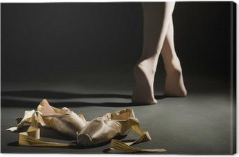 Canvas Ballet schoes