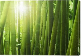 Canvas Bamboebos.