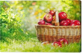 Canvas Biologische appelen in een mand buiten