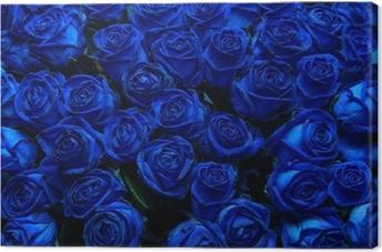 Canvas Blauwe rozen