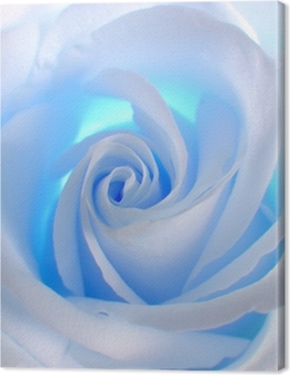 Canvas Blue Rose