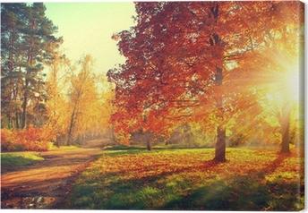 Canvas Bomen in de herfstzon