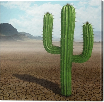 Canvas Cactus in de woestijn