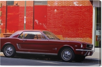 Canvas Car