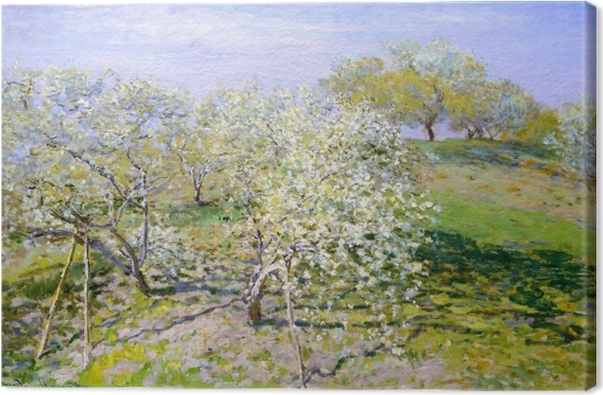 Canvas Claude Monet - Bloeiende appelbomen - Reproducties