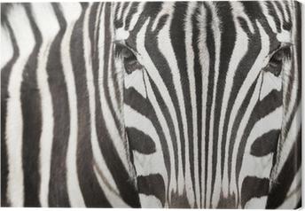 Canvas Close-up van zebra hoofd en lichaam met mooie gestreepte patroon