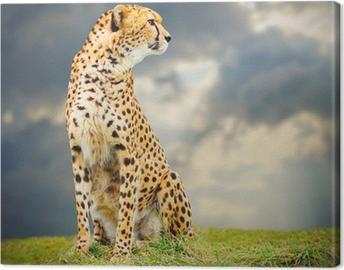 Canvas De Cheetah (Acinonyx jubatus) in de Afrikaanse savanne.