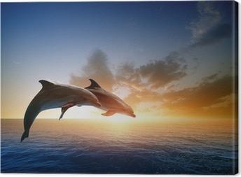Canvas Dolfijnen springen