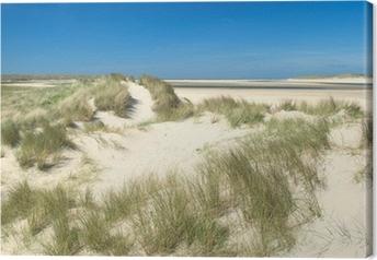 Canvas Duinen aan de kust