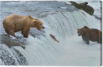 Canvas Een bruine grizzly beer jacht zalm in de rivier, Alaska, Katmai