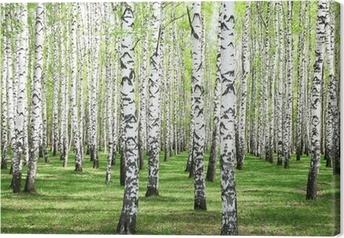 Canvas Eerste lente greens in berkbosje