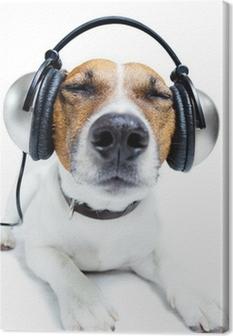 Canvas Hond luisteren muziek