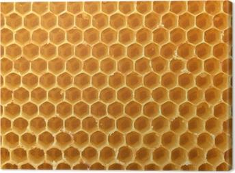 Canvas Honingraat achtergrond