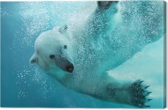 Canvas Ijsbeer onderwater aanval