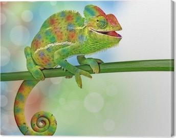 Canvas Kameleon en kleuren