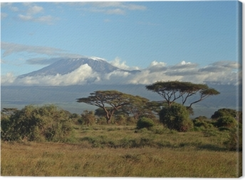 Canvas Kilimanjaro