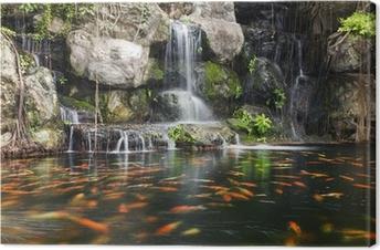 Karpers In Tuin : Sticker koi vissen in de vijver in de tuin met een waterval u2022 pixers