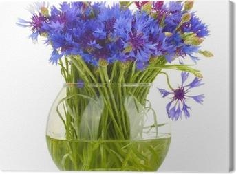Canvas Korenbloemen in glazen vaas op wit wordt geïsoleerd