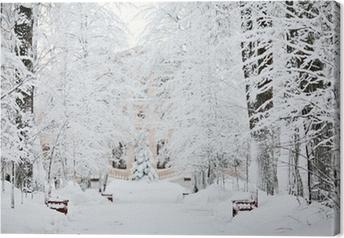Canvas Koude winter forest landschap sneeuw
