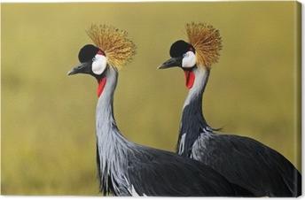 Canvas Kraanvogel