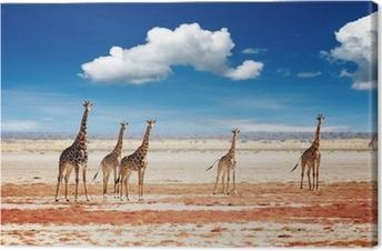 Canvas Kudde giraffen