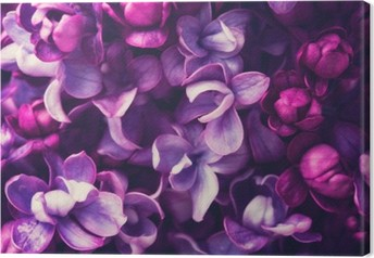 Canvas Lila bloemen achtergrond