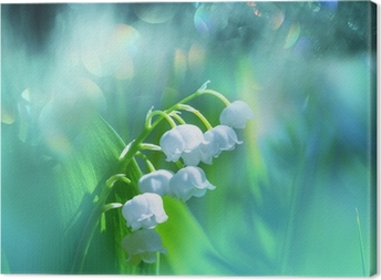 Canvas Lily of the valley