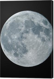 Canvas Lune de nuit nacht