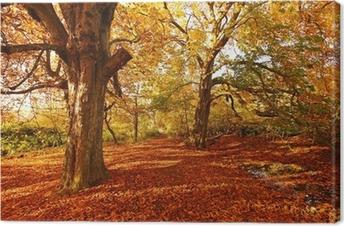 Canvas Mooie Herfst in het park