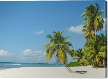 Canvas Mooie hoge palmbomen en witte zandstrand