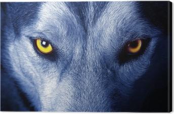 Canvas Mooie ogen van een wilde wolf.