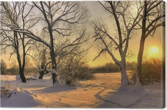 Canvas Mooie winter zonsondergang met bomen in de sneeuw