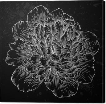 Canvas Mooie zwart-witte pioen bloem geïsoleerd op de achtergrond. Met de hand getekende contourlijnen en beroertes.