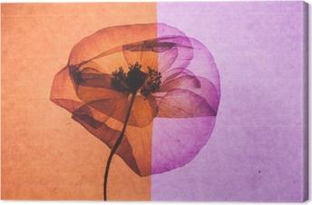 Canvas Nice flower