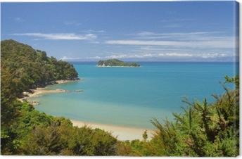 Canvas Nieuw-Zeeland Landschap. Abel Tasman National Park.