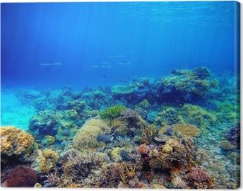 Canvas Onderwater scene. Koraalrif, kleurrijke vissen en zonnige hemel shinin