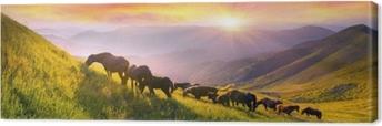 Canvas Paarden op de bergtop