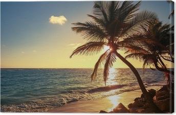 Canvas Palmboom op het tropische strand