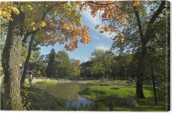 Canvas Park