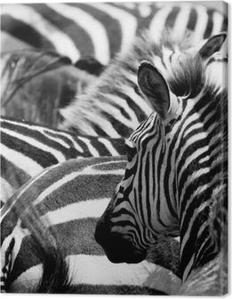 Canvas Patroon van zebra's