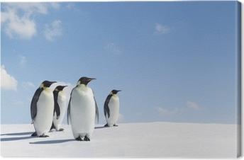 Canvas Penguins