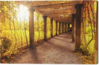 Canvas Prachtige herfst park