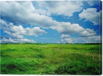 Canvas Prachtige natuur landschap