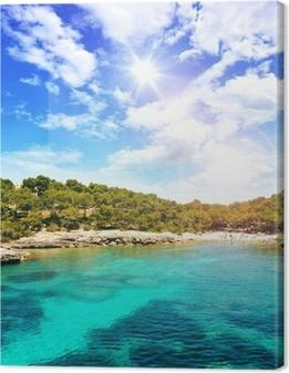 Canvas premium Droom strand met kristalhelder water