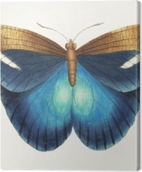 Canvas premium Illustratie van dierenkunstwerk